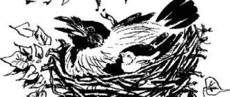 Сказочка про Воронушку – черную головушку и желтую птичку Канарейку - Дмитрий Мамин-Сибиряк