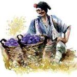 Сливы за мусор - Болгарская сказка
