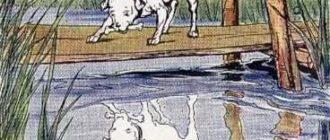 Собака и её отражение - Эзоп