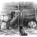 Спор животных - Константин Ушинский