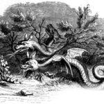 Стоглавый и стохвостый драконы - Жан де Лафонтен