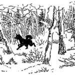 Страшная охота - Георгий Скребицкий