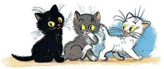 Три котёнка - Владимир Сутеев