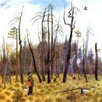 Весеннее небо: Воздушный барашек - Юрий Коваль