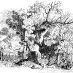 Виноградник и олень - Жан де Лафонтен