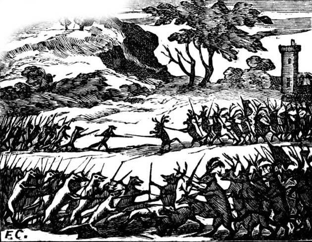Война крыс и ласок