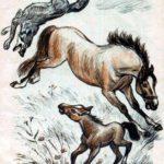 Волк и кобыла - Лев Толстой