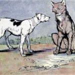 Волк и собака - Эзоп