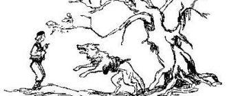 Волк с железной головой (сербская) - Славянская сказка