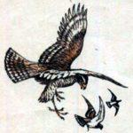 Ястреб и голуби - Лев Толстой