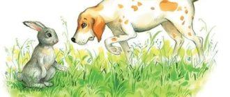Заяц и гончая собака - Лев Толстой