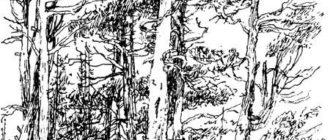 Заячьи лапы - Константин Паустовский
