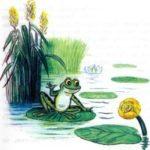 Зеленый лягушонок и желтая кувшинка - Михаил Пляцковский