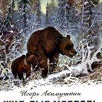 Жил-был медведь - Акимушкин И. - Отечественные писатели