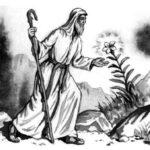 Житель Афонской горы - Владимир Одоевский