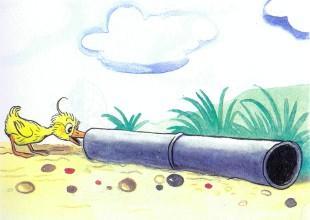 утенок заглядывает в трубу