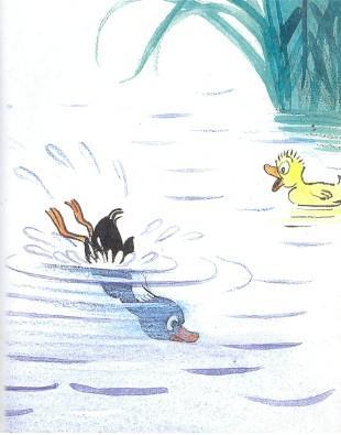 тим утенок черный ныряет в воду