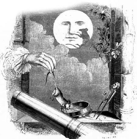 Зверь на Луне