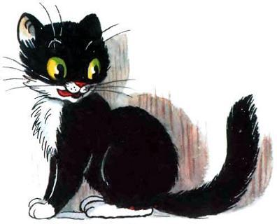 Котауси кошка