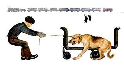 Вдруг видят: стоит у колёс Огромный взъерошенный пёс. Поймали его и в багаж,