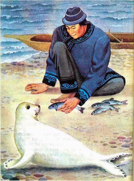 человек кормит белую нерпу рыбой
