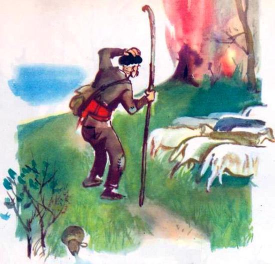 пасет отару овец