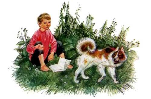 Бишка мальчик и собака