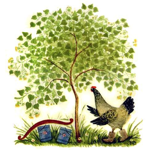 курочка под деревом