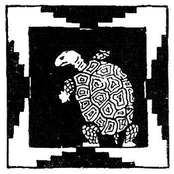 Черепаха и Каипора