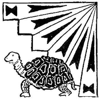 Черепаха и человек
