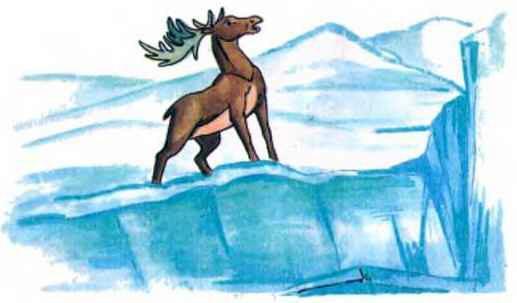 олень на льдине