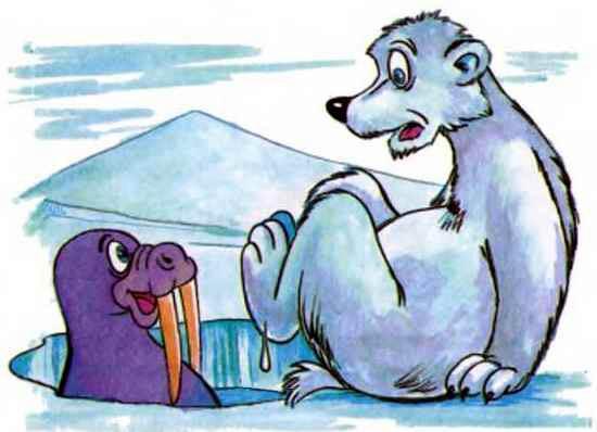 морж в проруби и медведь