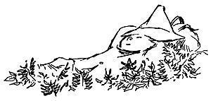 Снусмумрик прилег в траву