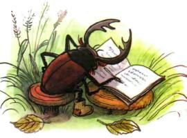 жук харитон пишет
