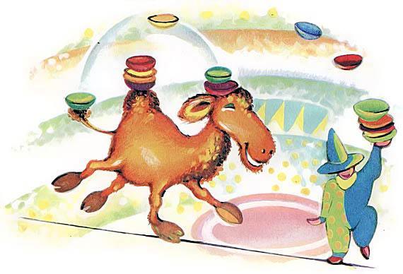 Дрессированный верблюд выступает в цирке
