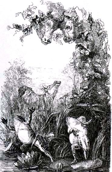 Два быка и лягушка