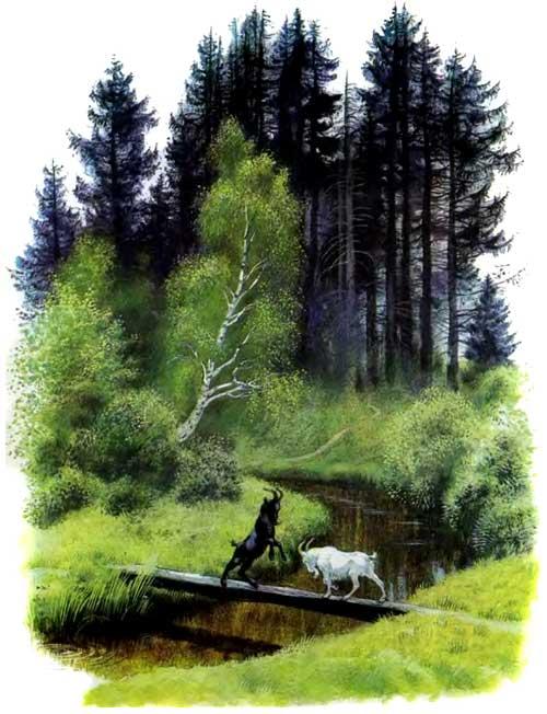 Два козлика черный и белый встретились на мостике у леса