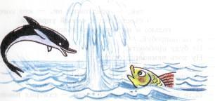 дельфин фонтан рыба
