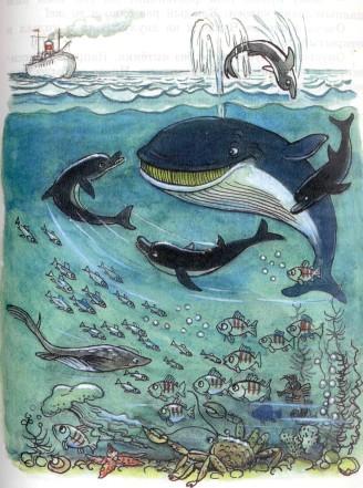 под водой дельфины и кит рыбы крабы на морском дне