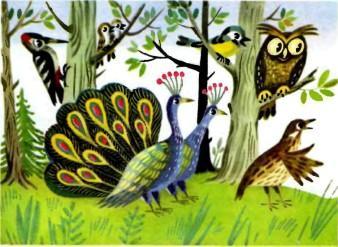 филин сова и павлины