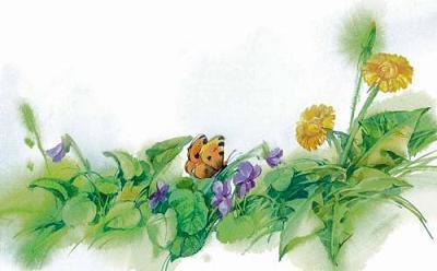 бабочка на лужайке