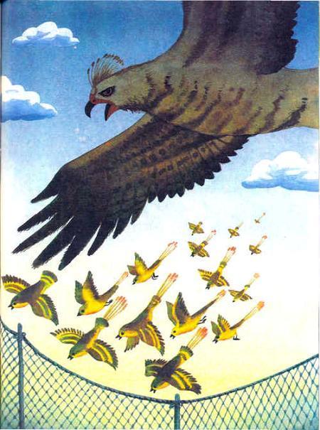 орел и маленькие птицы врассыпную