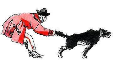 Куба поймал собаку за хвост