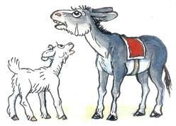 ослик осел и козленок