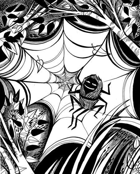 Как паучок стал вождём рода
