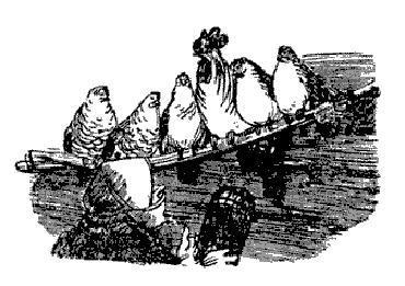 старуха в курятнике