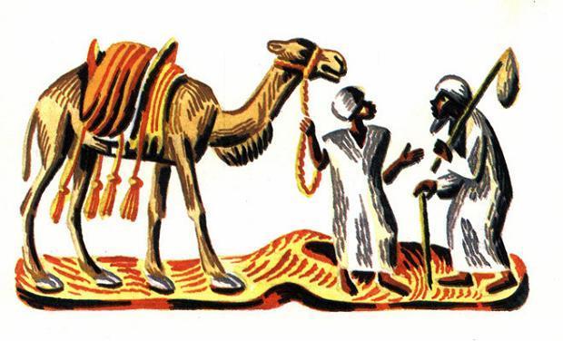 Как верблюды удачу принесли