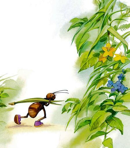 муравей несет травинку