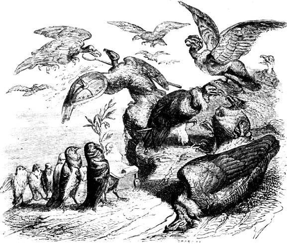 Коршуны и голуби
