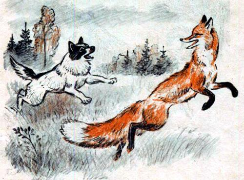 Кошка и лисица